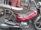 Скутер кануни (фермер)